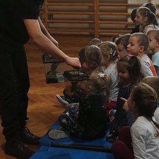 Żywa lekcja przyrody w naszej szkole – pokaz płazów